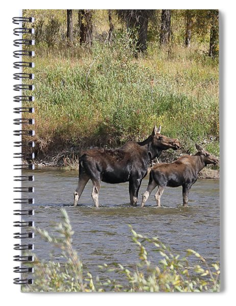 Moose With Twins Spiral Notebook