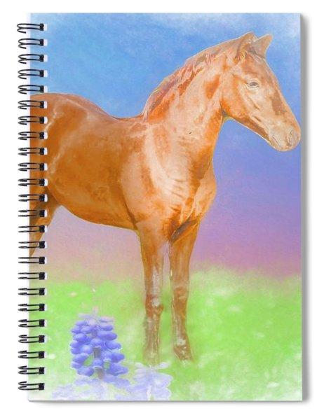 Morgan Foal. Spiral Notebook