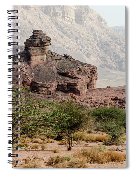 Spiral Notebook featuring the photograph Morning Came To Timna by Arik Baltinester