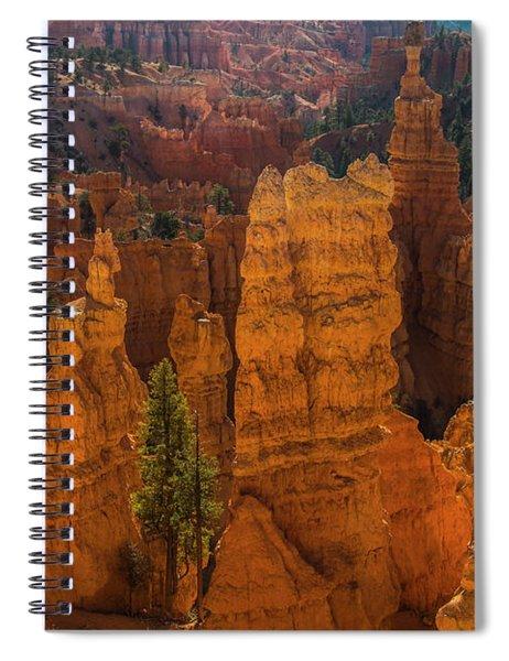 Morning Glow II Spiral Notebook