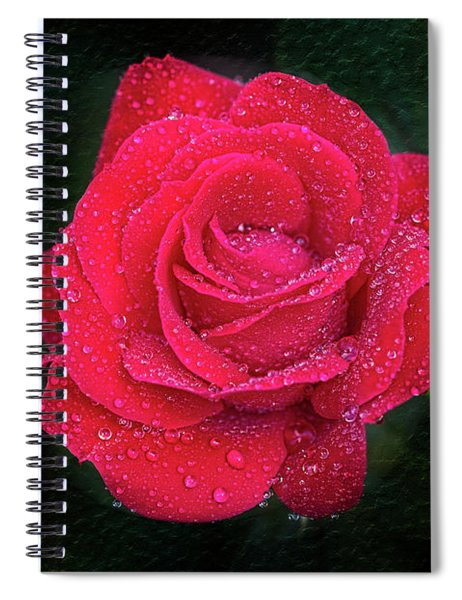 Morning Mist On Red Rose Spiral Notebook