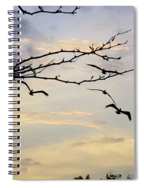 Morning Sky View Spiral Notebook