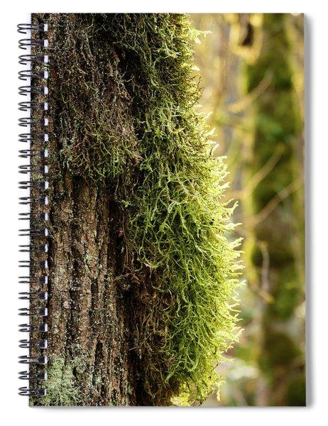 Moss On Bark Spiral Notebook