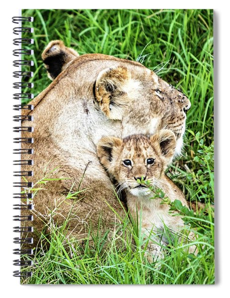 Mother Lion And Baby Cub In Kenya Africa Spiral Notebook