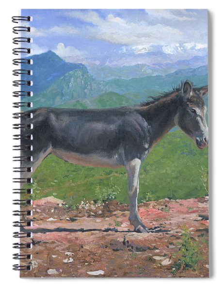 Mountain Donkey  Spiral Notebook