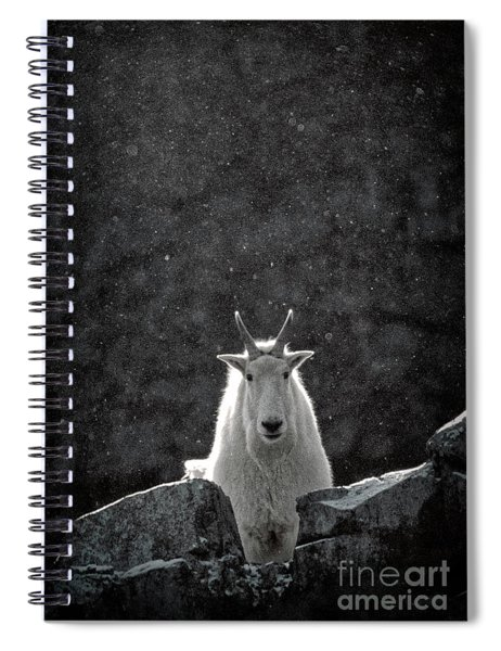 Mountain Goat Spiral Notebook