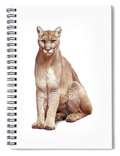 Mountain Lion Named Sierra Spiral Notebook