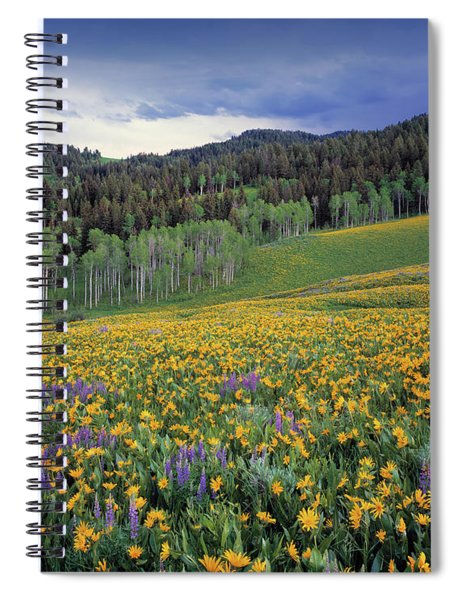 Mountain Spring Spiral Notebook