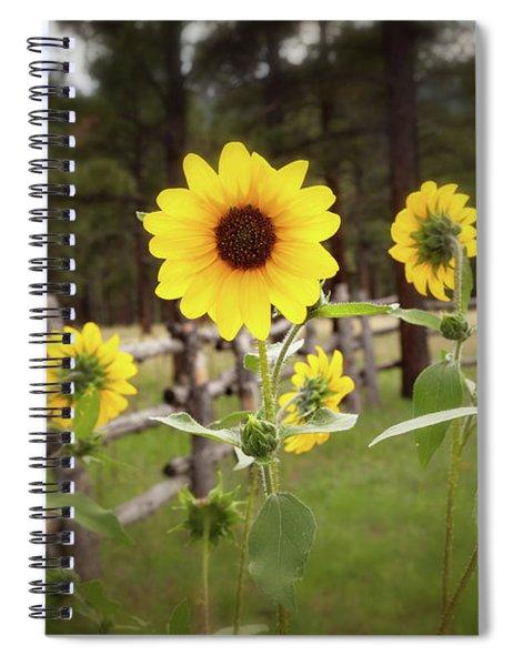 Mountain Sunflowers Spiral Notebook