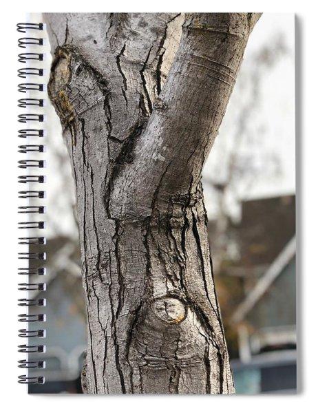 Mr. Skeptical  Spiral Notebook