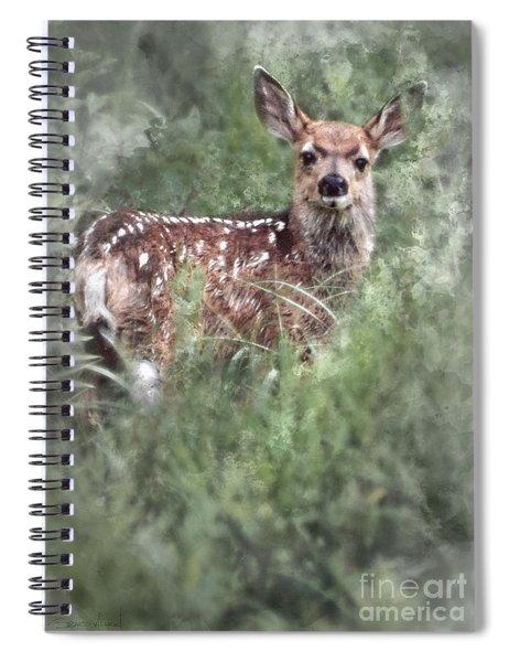 Mule Deer Fawn Spiral Notebook