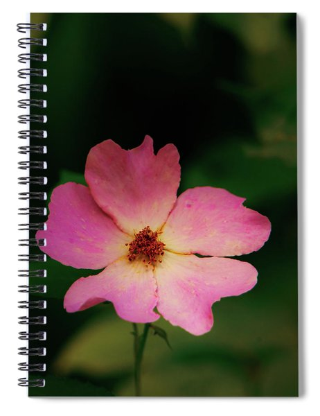 Multi Floral Rose Flower Spiral Notebook