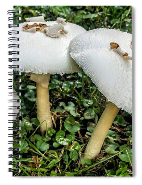 Mushroom Quartet Spiral Notebook