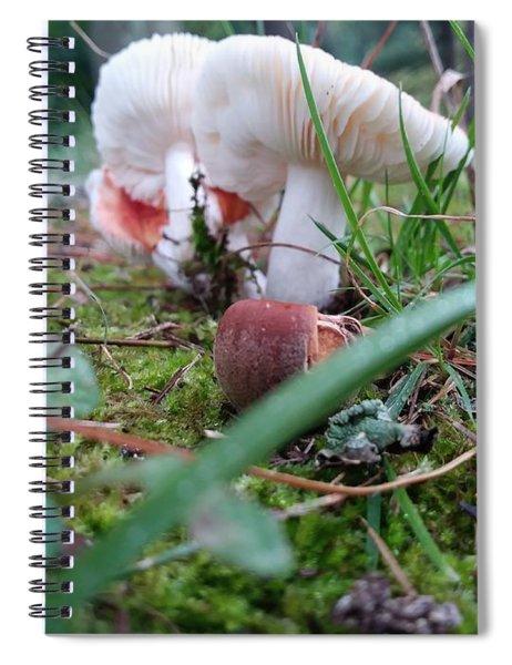 Mushrooms And Moss  Spiral Notebook