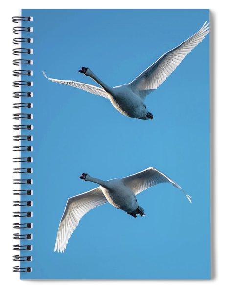 Mute Swans In Flight Spiral Notebook