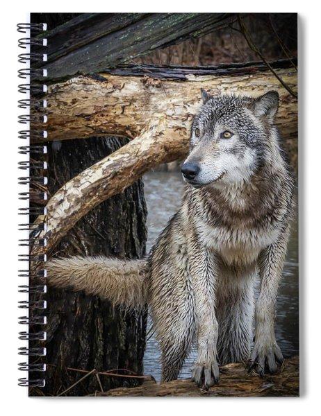 My Favorite Pose Spiral Notebook