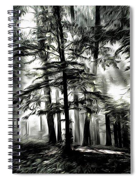 Mystical Forest Spiral Notebook