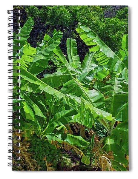 Nana Banana Spiral Notebook
