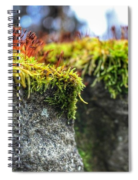 Nascent Spiral Notebook
