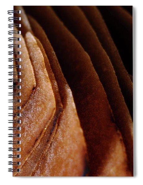 Natural Canyons Spiral Notebook