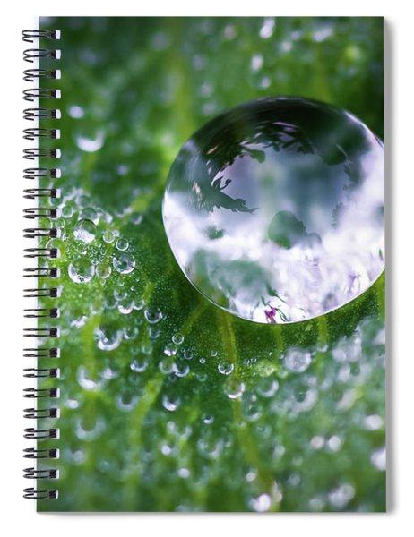 Natures Crystal Ball Spiral Notebook