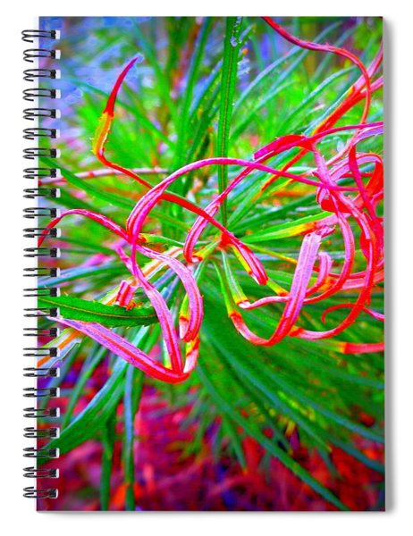 Nature's  Ribbons Spiral Notebook