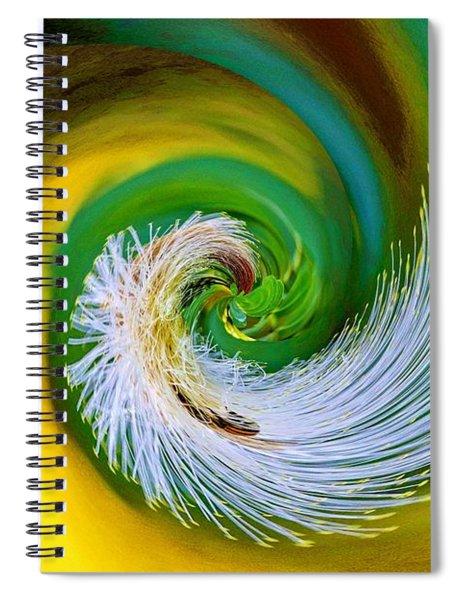 Nature's Spiral Spiral Notebook