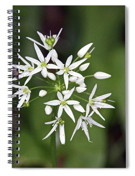 Neston. Wild Garlic. Spiral Notebook