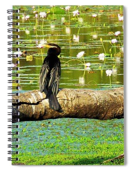 Never Mind The Crocodiles, Australasian Darter Spiral Notebook