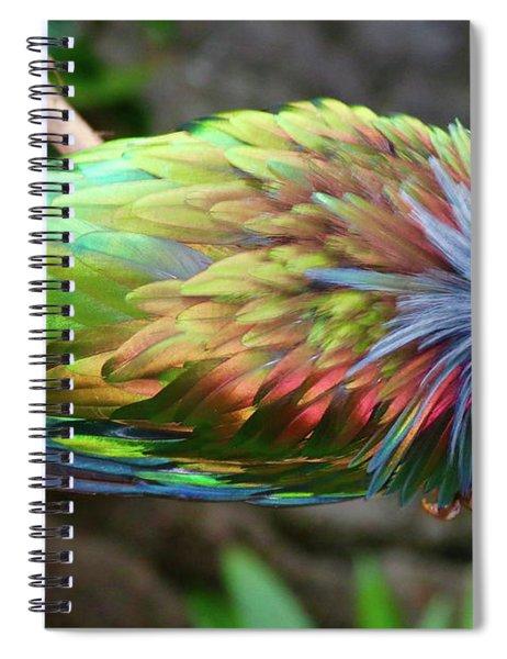 Nicobar Pigeon Spiral Notebook