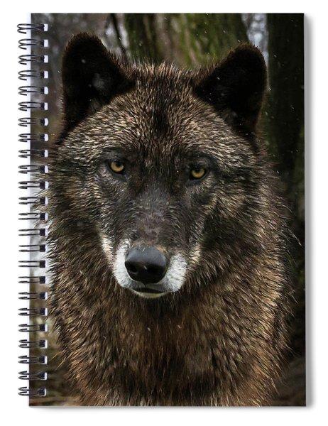 Niko Portrait Spiral Notebook