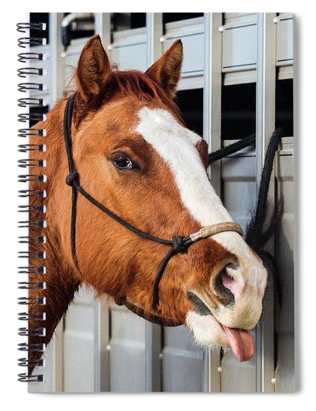 No Respect Spiral Notebook