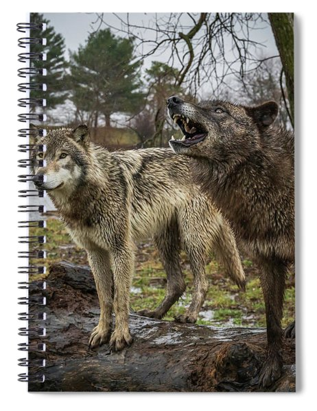 Noisy Wolf Spiral Notebook