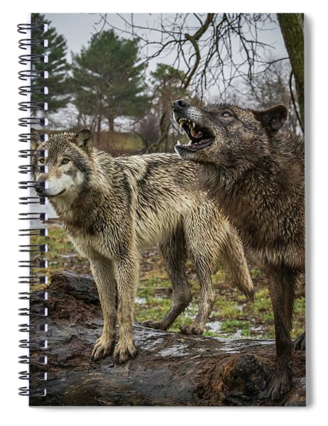Noisy Wolf Spiral Notebook