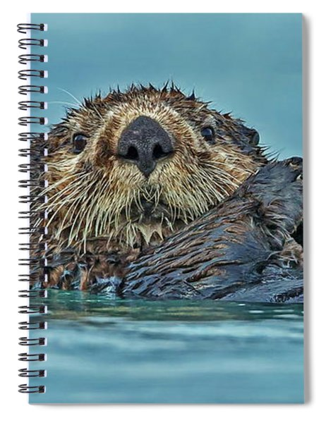 Northern Sea Otter In Alaska Spiral Notebook