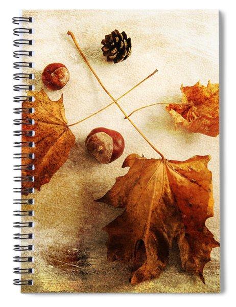 November Mood Spiral Notebook
