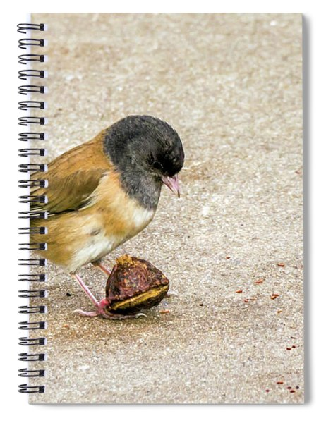 Now What? Spiral Notebook