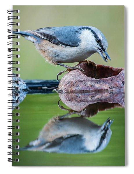 Nuthatch's Catch Spiral Notebook