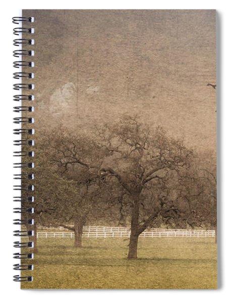 Oak Trees In Fog Spiral Notebook