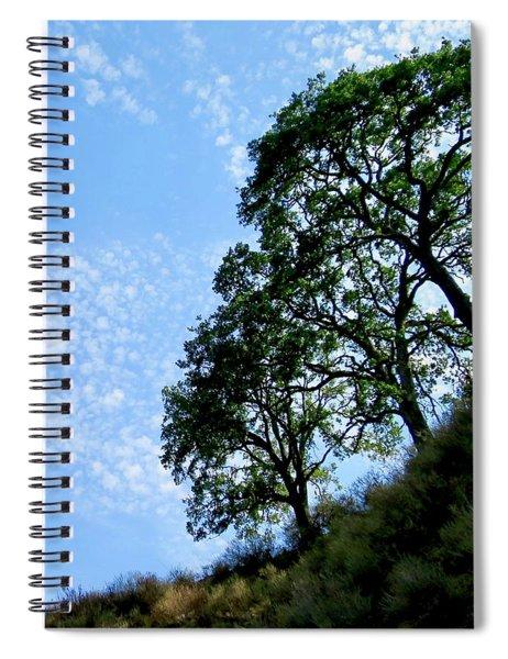 Oaks And Sky Spiral Notebook