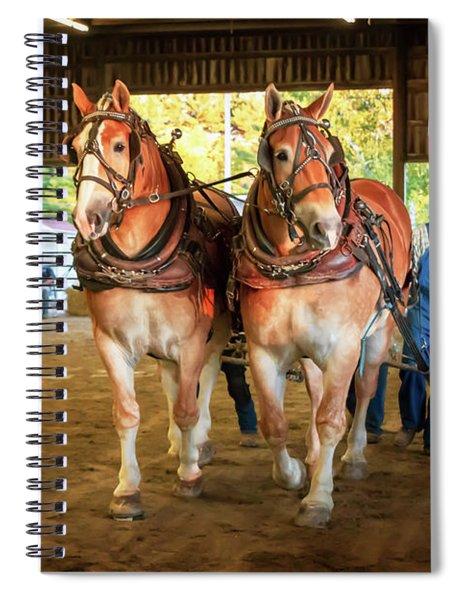 Oh Such Lovelies  Spiral Notebook