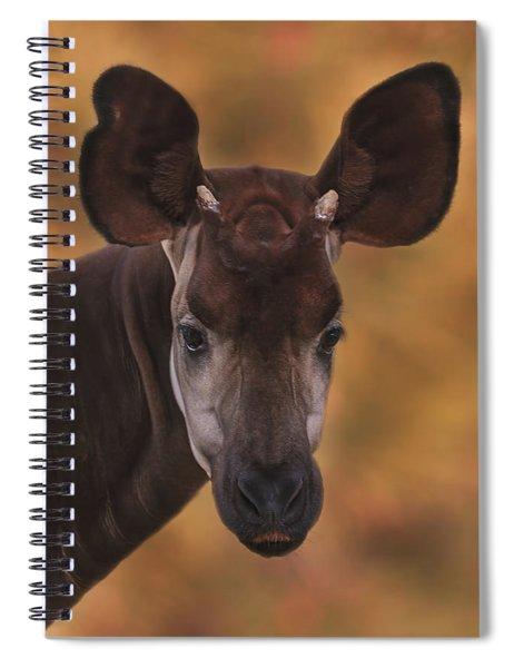 Okapi Spiral Notebook