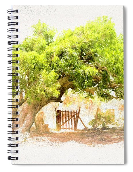 Old Leaning Tree At Sandy Hill  Anguilla Spiral Notebook