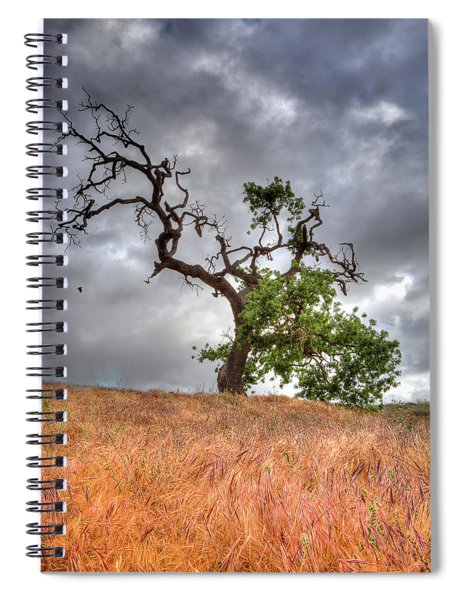 Old Oak Tree Spiral Notebook
