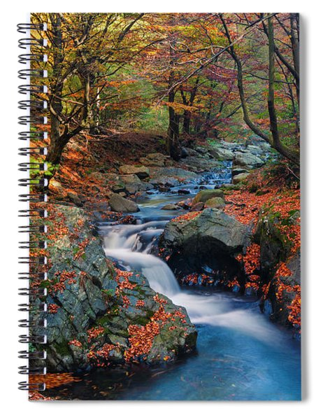Old River Spiral Notebook