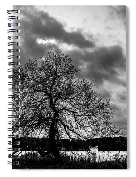 Old Tree II Spiral Notebook