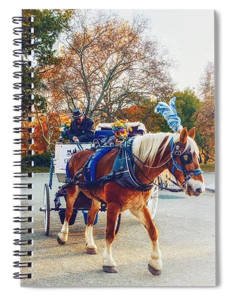 Once Around The Park Spiral Notebook