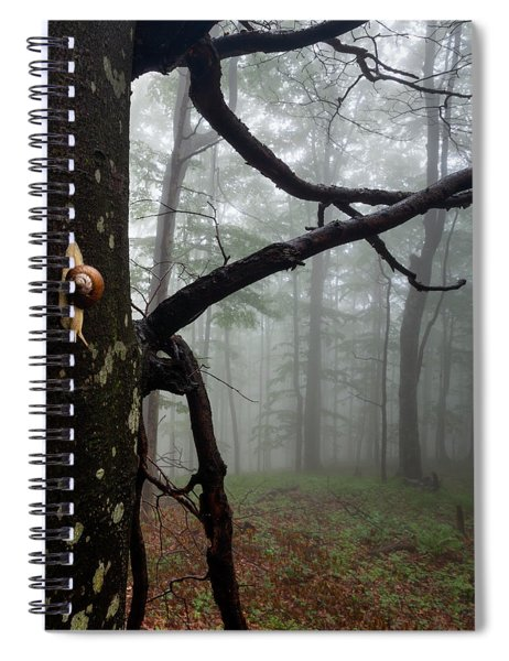 One Day Of The Snail's Life Spiral Notebook