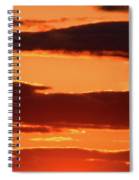 Orange And Black Spiral Notebook