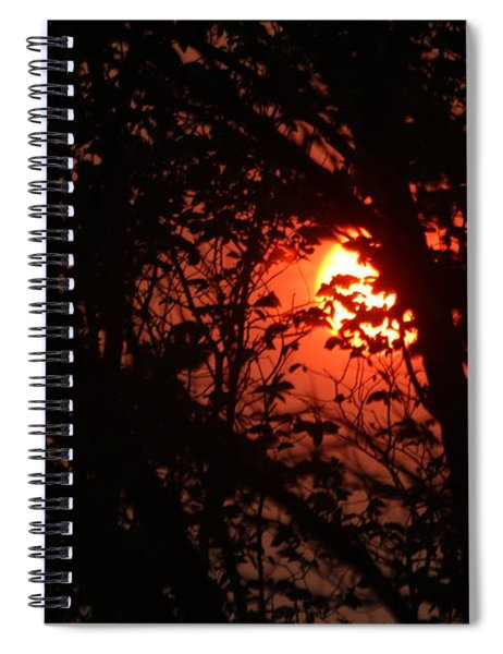 Orange Daybreak Spiral Notebook